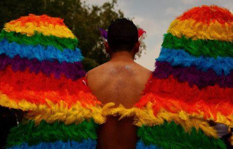 טקילה לכולם – נישואים גאים גם בגוודלחרה